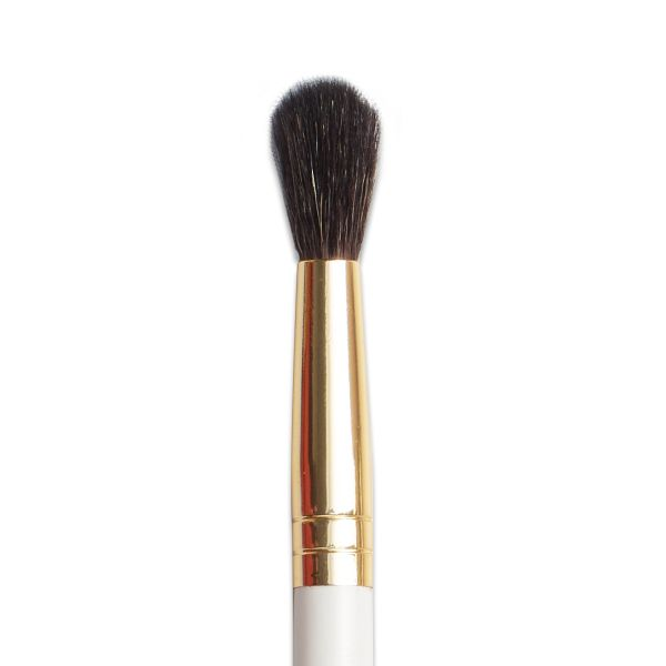 All Eye Need - Brushes for Eye makeup